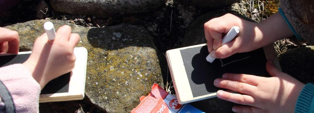 smartphone-bois-ardoise